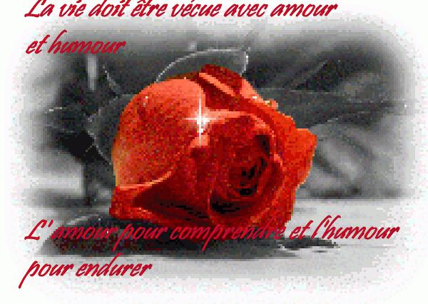 image texte